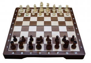 Chess Set - Medium (TWE197911)